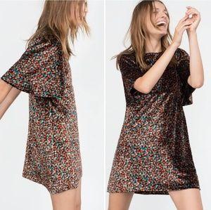 Zara   Velvet Floral Flutter Sleeve Dress Nwot